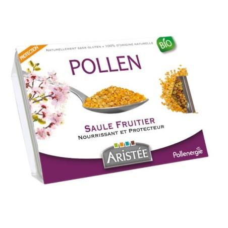 POLLEN SAULE FRUITIER - 250G - BIO